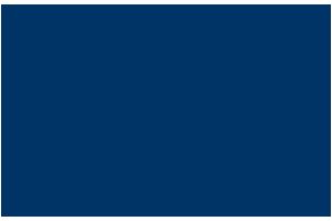 Chiropractic Chapin SC Palmetto Aesthetics Logo